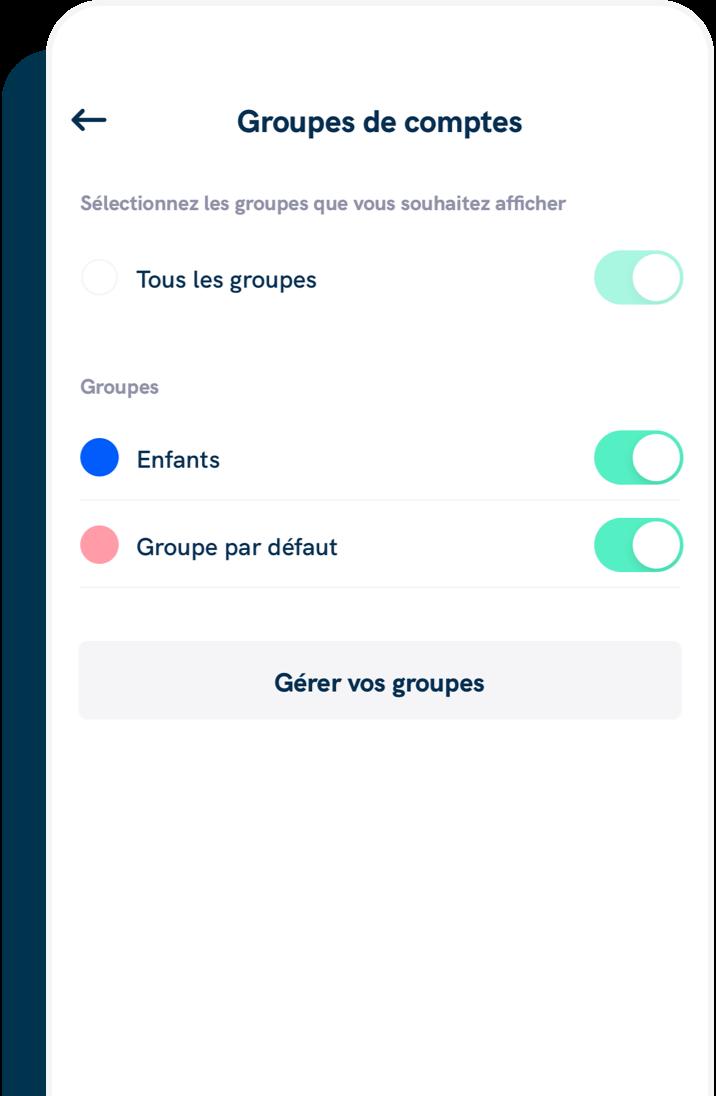 La création des groupes de comptes vous permet de catégoriser vos comptes professionnels, personnels etc...